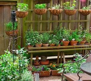 container gardening1